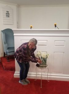 Flowers For The Sanctuary