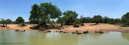 """Eleven 