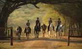 The Pakamisa team training young horses ...