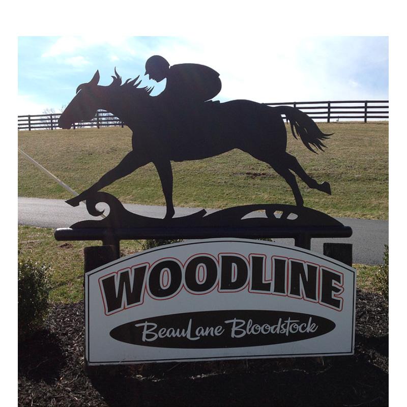 Successful Horse Auction to Boost Kentucky Church (Plus News Briefs)