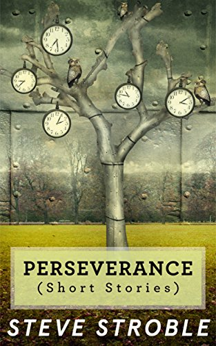 Perseverance (Short Stories) (Short Stories Series Book 1)