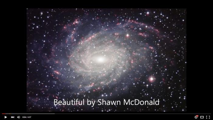 Beautiful, by Shawn McDonald