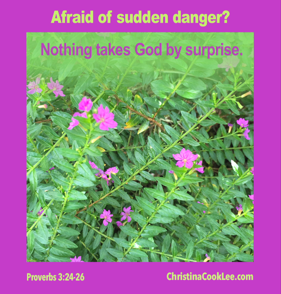 Afraid of Sudden Danger? Nothing takes God by surprise. Proverbs 3:24-26, christinacooklee.com