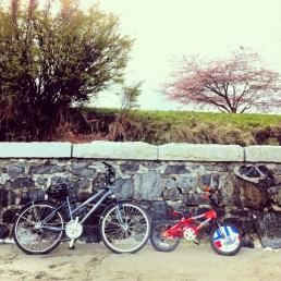 Bike day - Stanley Park seawall - April 2012