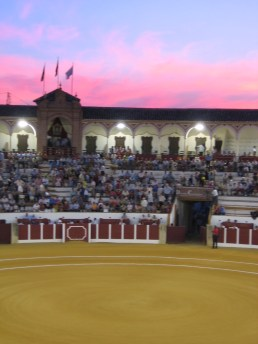 Bull fight in Antequera, Spain - Summer 2005
