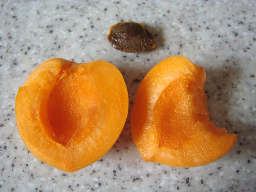 FIRST_APRICOT