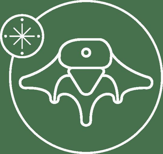 Spinal Compass Icon Design