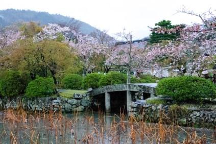 Bridge at Tenryū-ji