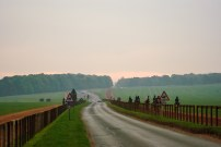 Warren Hill in Newmarket is training ground for thousands of racing horses.