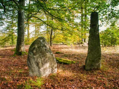 A few stones remains of two giant stone ship settings in a copse of oaks in Röglinge in southern Sweden.
