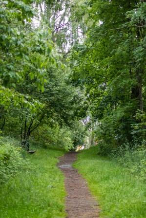 En blöt promenad genom den lilla skogsdungen på måndag morgon. / A wet walk on the little path though the little wood on Monday morning. Borås in Sweden.
