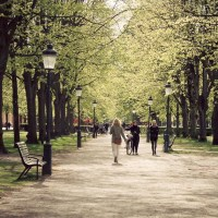 Springtime on Kungsgatan