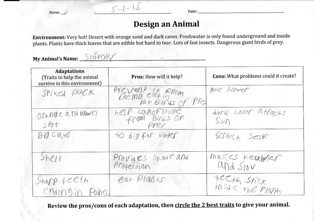 Ecosystems Animal Adaptations