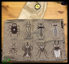 Lillestoff Käferforschung