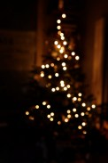 112_xmas_lights
