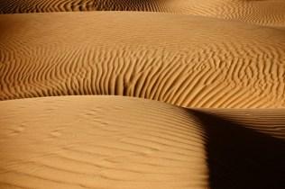 desert shadows-5