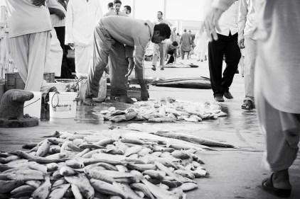 Fish Seller