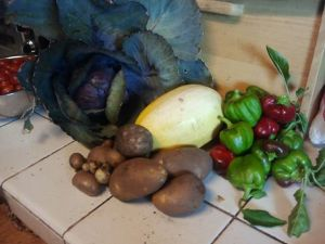 The garden haul on June 8th. Ruby red cabbage, squash, potatoes, and bell peppers. Yum! (Tomatoes in the background are from the 7th of June)