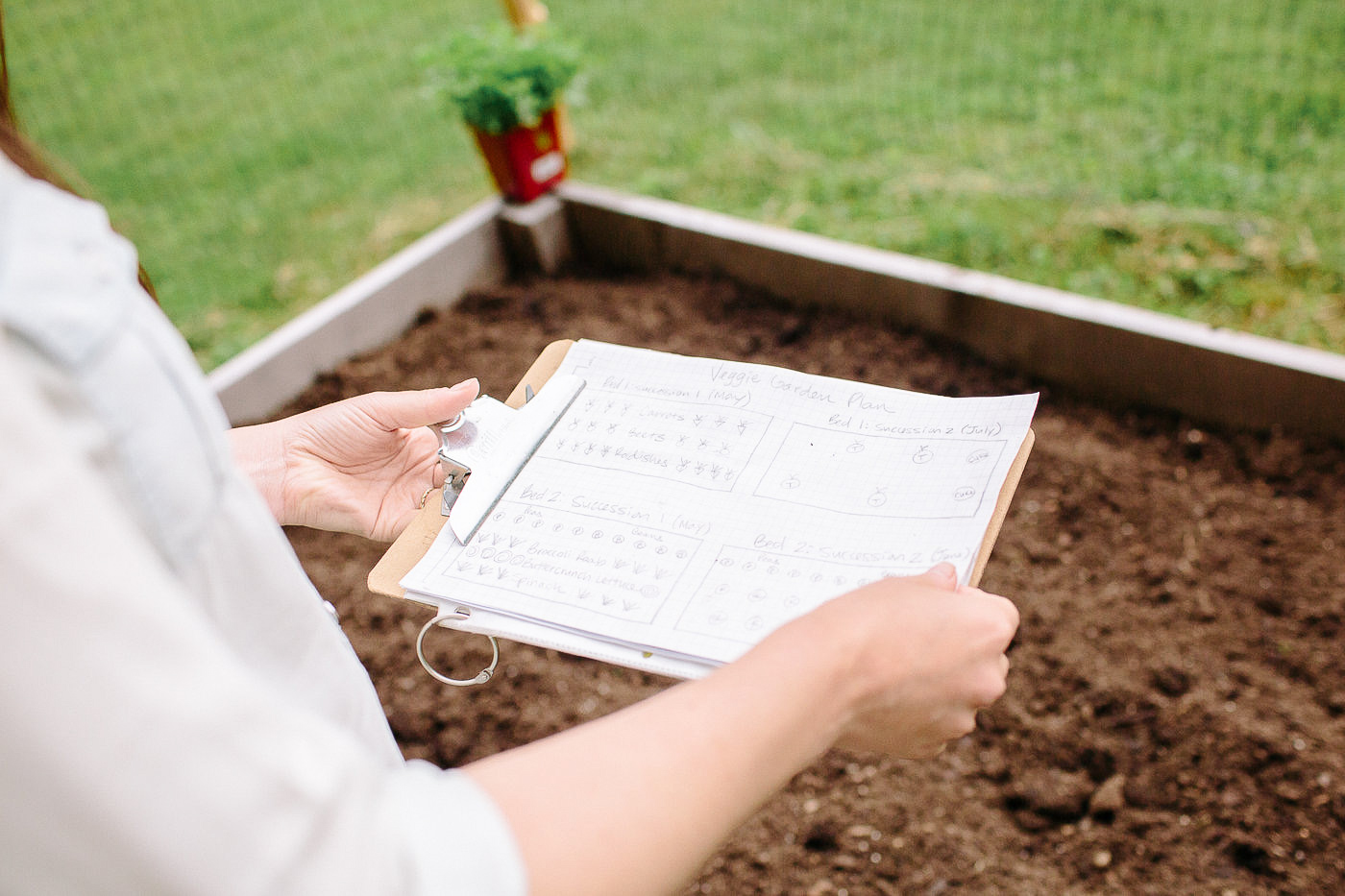 picture of  Map, Plan & Plant Your Vegetable Garden