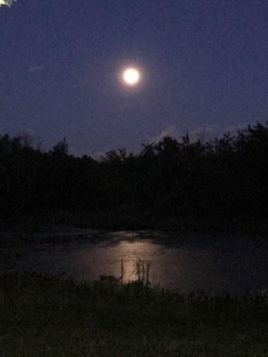 Full Moon July 8