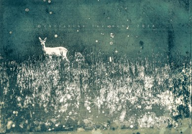plume et marker sur cyanotype sur papier, virage au thé, encaustique, A4, 2018