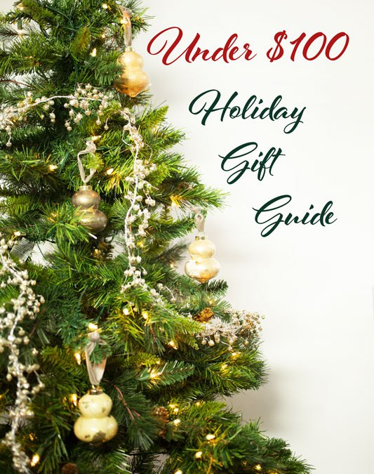 Under $100 Holiday Gift Guide