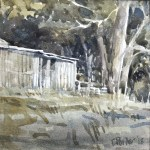 Watercolour painting by Christine Porter showing what would have been the engine room of a slab shearing shed ,, just the end of it. and the tree near its edge. A lot of green in this pic.