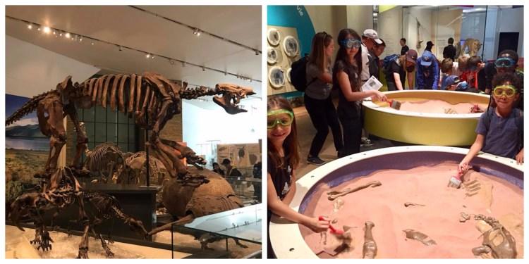 Toronto Royal Ontario Museum Christine Rai Teach Travel Taste