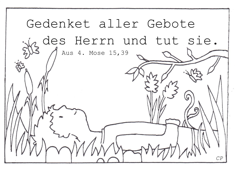 Basteln Graskarte Grasbild Christliche Perlen
