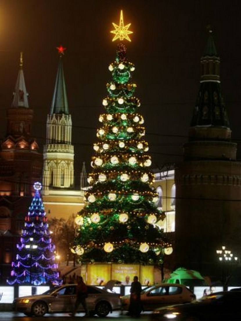 Christmas Trees Rise Just Outside the Moscow Kremlin, Russia