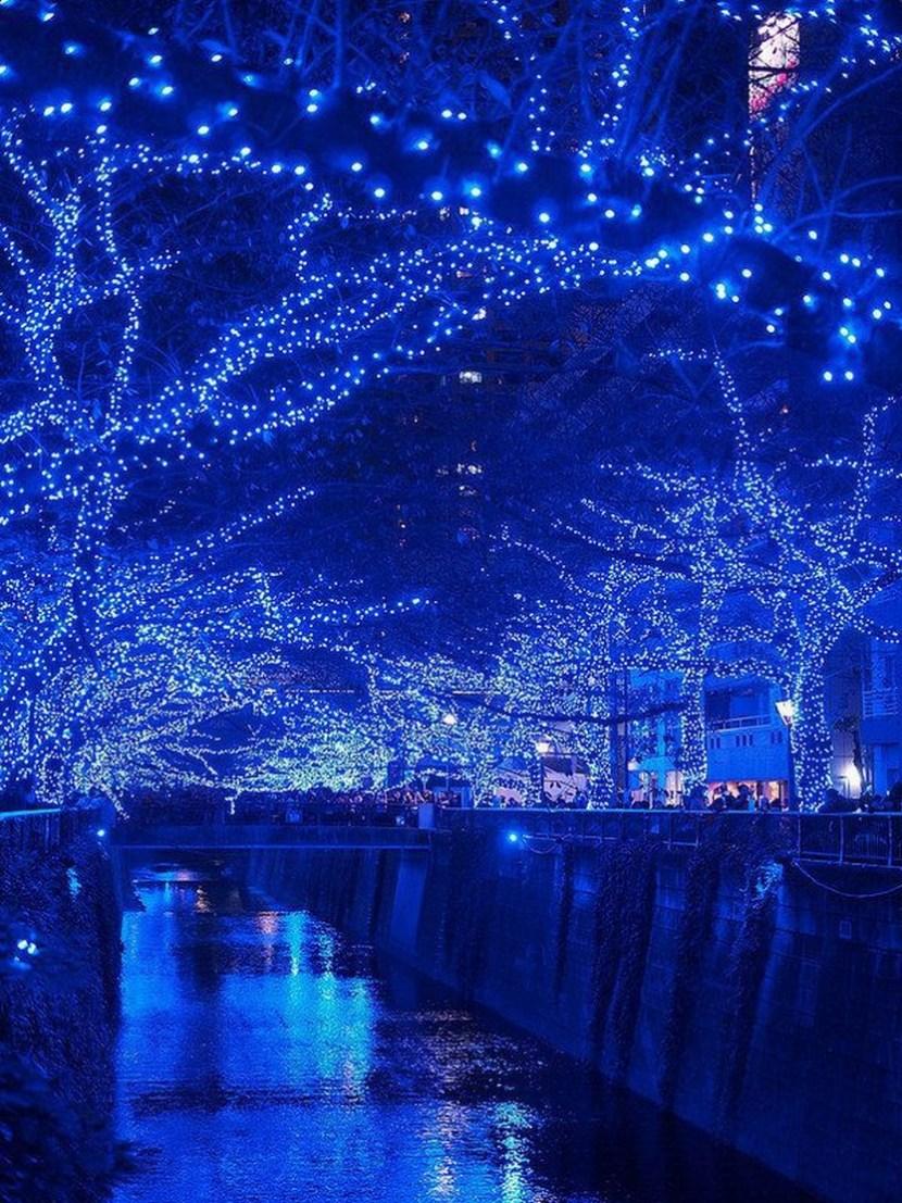Tokyo. Christmas illumination 2014