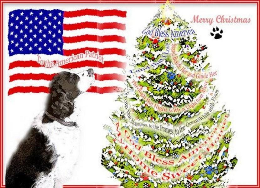 Springer Spaniel American Patriotic Christmas Card