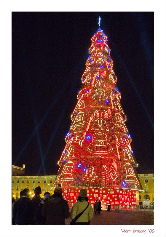 christmas-tree-in-lisbon