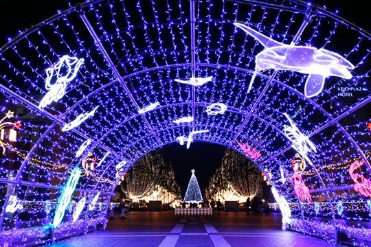 Christmas illuminations Tokyo, Japan