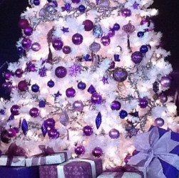 Purple Christmas Trees (36 photos)