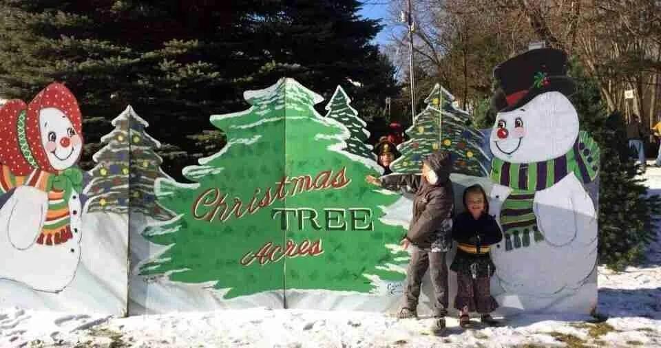 Christmas Tree Acres - snowman Sign