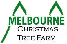 Christmas Tree Farm Melbourne