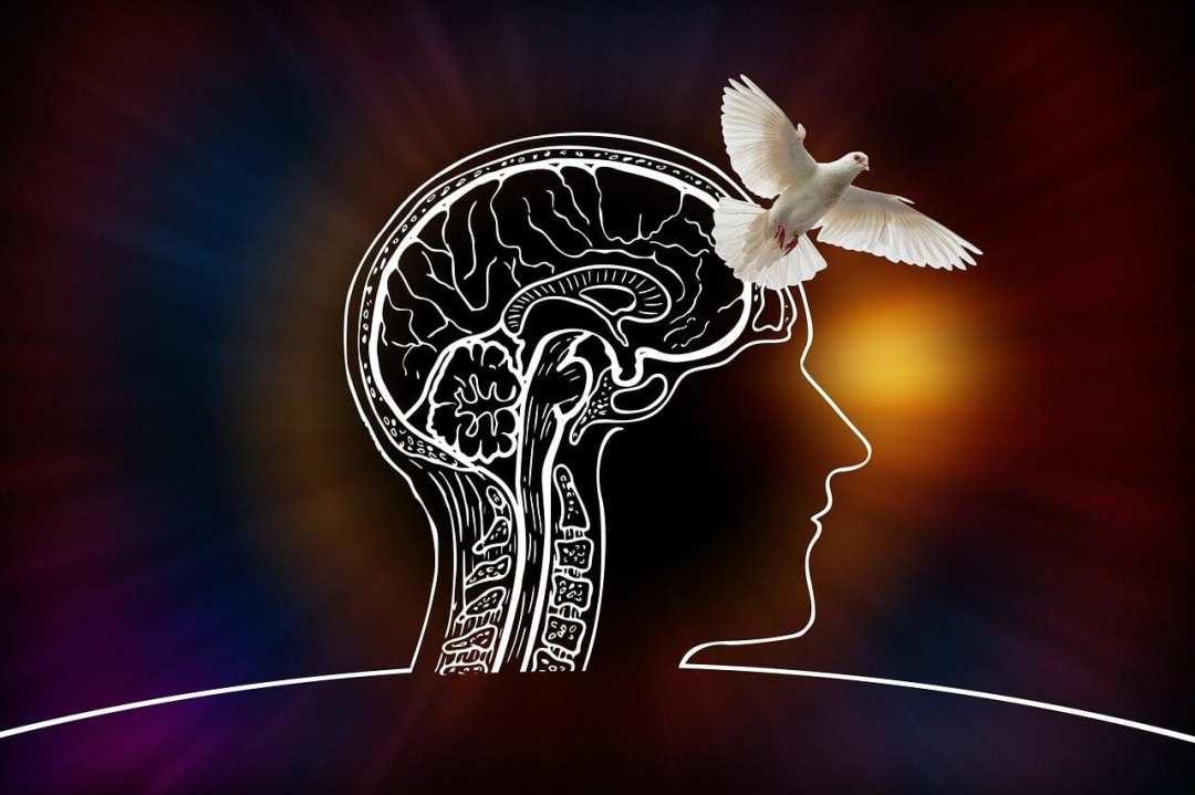 1 - Devenir enseignant en méditation | Nous avons du retard à rattraper !