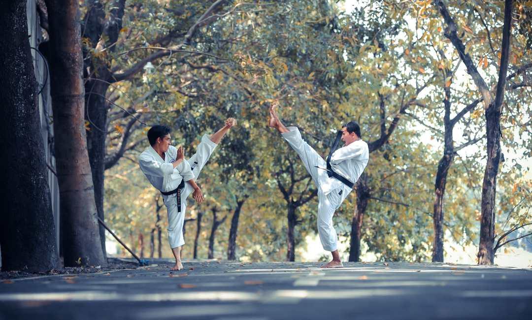 La maîtrise de l'art du combat