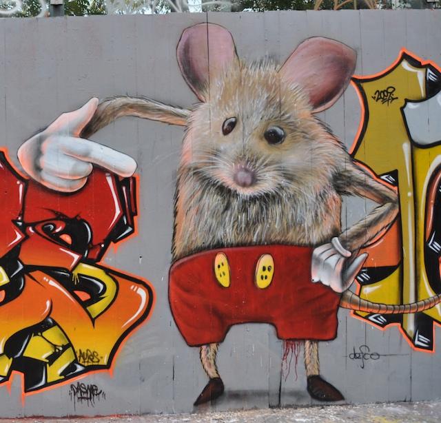 Mickey graff