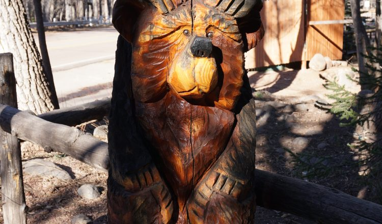 Bear Carvings in Christopher Creek