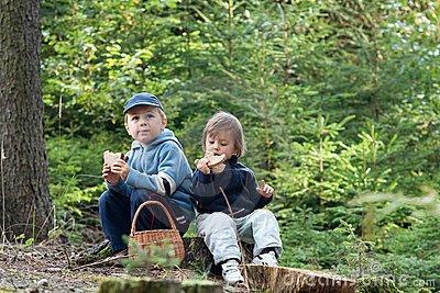 Picknicking in Christopher Creek