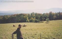 1996 Vermont