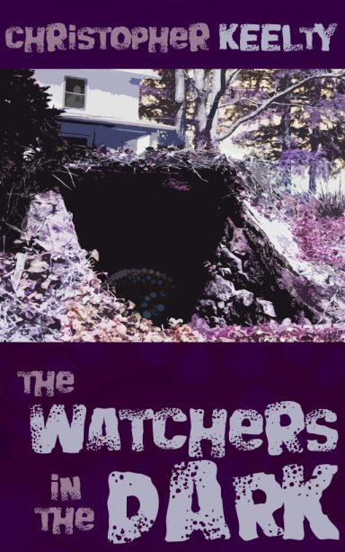 The Watchers in the Dark by Christopher Keelty - cover image