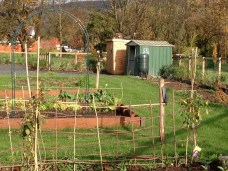 A single cottage has been retained and improved with allotments added to an enhanced cottage garden.