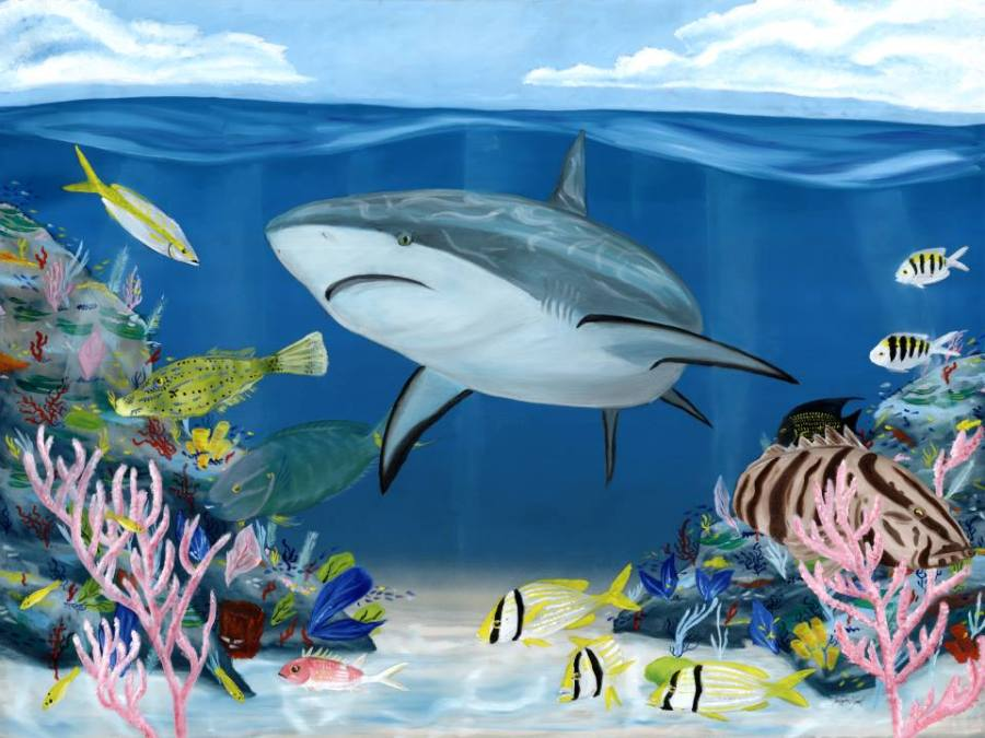 blacktip, reef, shark, coral, grouper, parrot fish, underwater, under sea, ocean, reef, painting, art