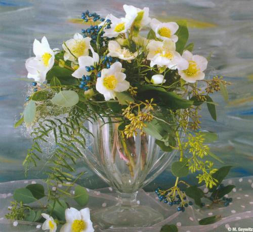 Florales 4-09