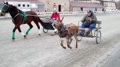 Donkey vs. Stbd