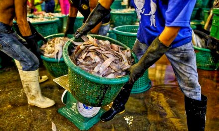 THE GUARDIAN – Thai seafood: are the prawns on your plate still fished by slaves?