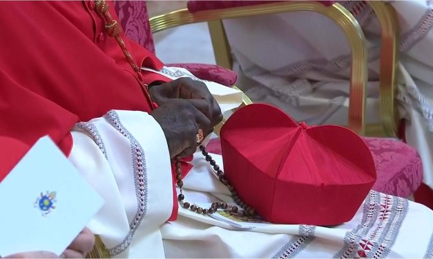 """Catholic Herald – """"As a bishop, it is my duty to warn the West"""": An interview with Cardinal Sarah"""
